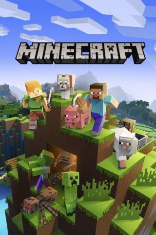 Minecraft | VGC