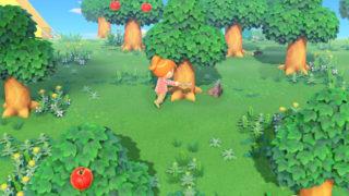 Nintendo Considering Adding Save Backups To Animal Crossing On